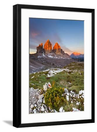 Three peaks of Lavaredo, Dolomites, Italy. The early morning colors the three peaks, in summertime.-ClickAlps-Framed Photographic Print