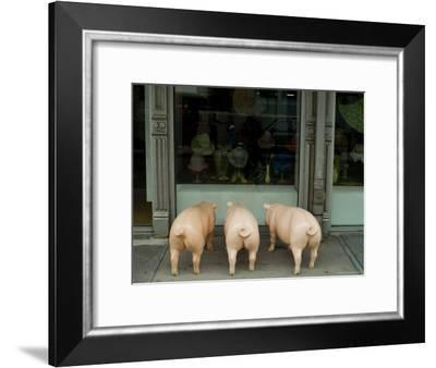 Three Plastic Pigs Window Shopping in New York-Todd Gipstein-Framed Photographic Print