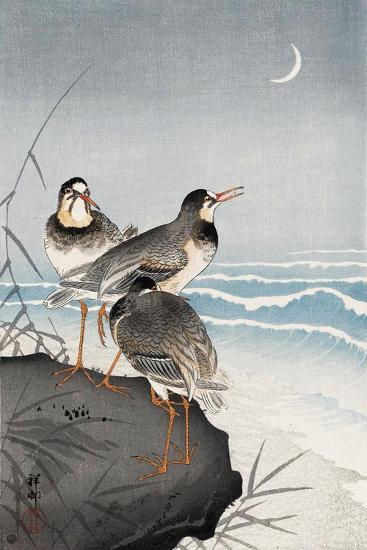 Three Plovers, Waves and Crescent Moon-Koson Ohara-Giclee Print