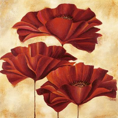 https://imgc.artprintimages.com/img/print/three-poppies-ii_u-l-f12v790.jpg?p=0