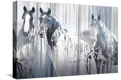 Three's Company-Marvin Pelkey-Stretched Canvas Print