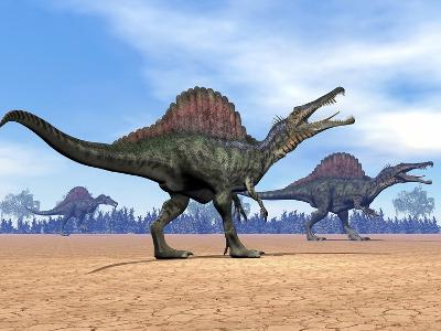 Three Spinosaurus Dinosaurs Walking in the Desert--Art Print
