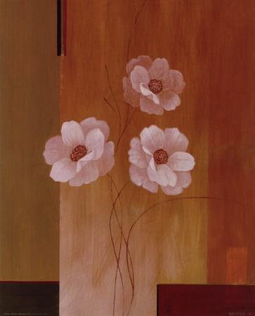 https://imgc.artprintimages.com/img/print/three-white-flowers-ii_u-l-f8im7w0.jpg?p=0