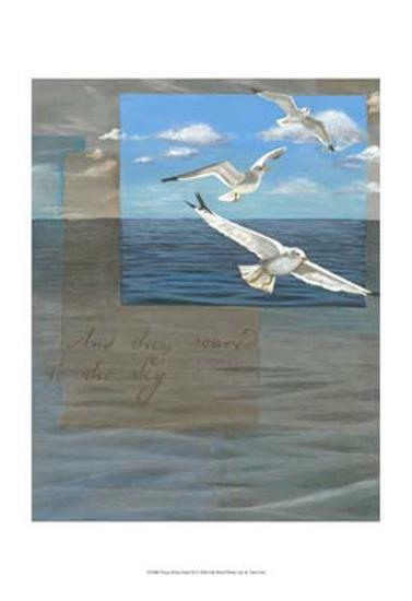 Three White Gulls III-Tara Friel-Art Print