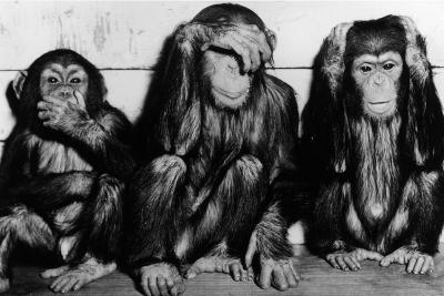 Three Wise Monkeys-Keystone-Photographic Print