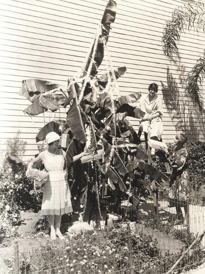 Three Women Decorating Banana Tree for Christmas--Photo