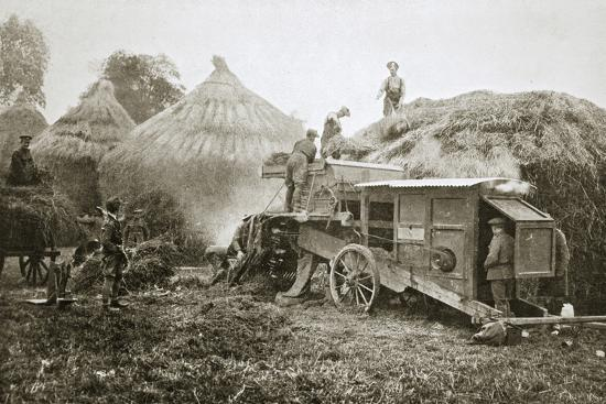 Threshing for straw for soldiers' use, France, World War I, 1916-Unknown-Photographic Print