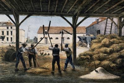 Threshing Wheat, France, 19th Century--Giclee Print