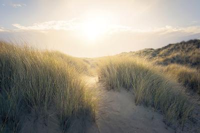 Through the Dunes-Steve Docwra-Giclee Print