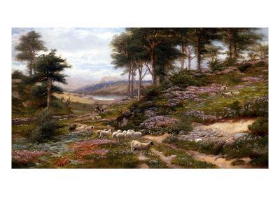Through the Heather, Dunkeld, Scotland, United Kingdom-George Vicat Cole-Giclee Print