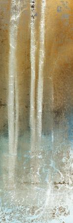 https://imgc.artprintimages.com/img/print/through-the-trees-c_u-l-f90au20.jpg?p=0