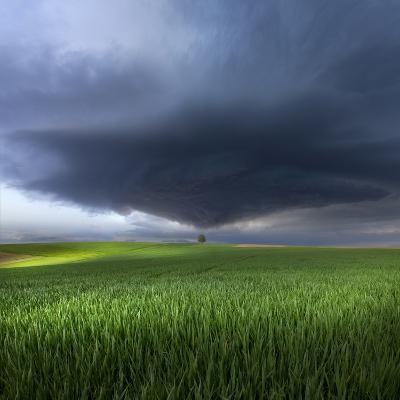 Thunderstorm Cell Over the Alb Plateau-Franz Schumacher-Photographic Print