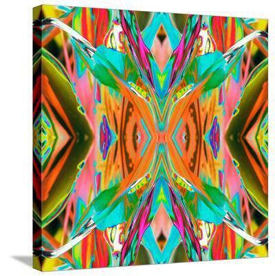 Ti Plant 1X-Rose Anne Colavito-Stretched Canvas Print
