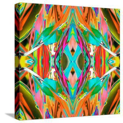 Ti Plant 2X-Rose Anne Colavito-Stretched Canvas Print