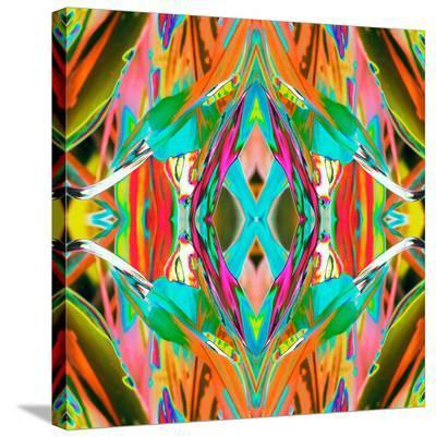 Ti Plant 2X-Rose Anne Colavito-Stretched Canvas Print