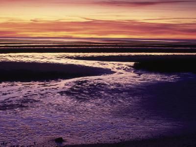 Tidal Flat at Sunset, Cape Cod, MA-Gary D^ Ercole-Photographic Print