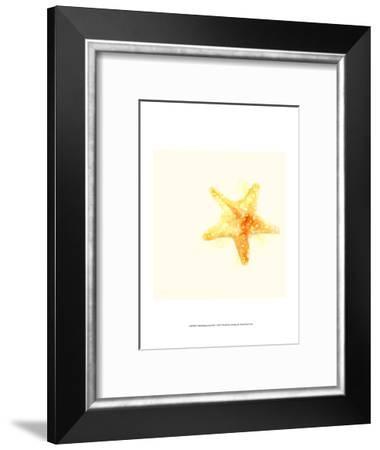 Tidal Impressions III-June Vess-Framed Art Print