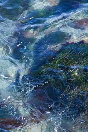 https://imgc.artprintimages.com/img/print/tide-pool-i_u-l-q19yh870.jpg?p=0