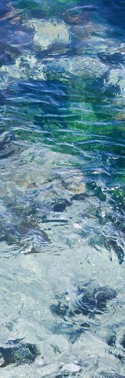 Tide Pool IV-Rita Crane-Photo