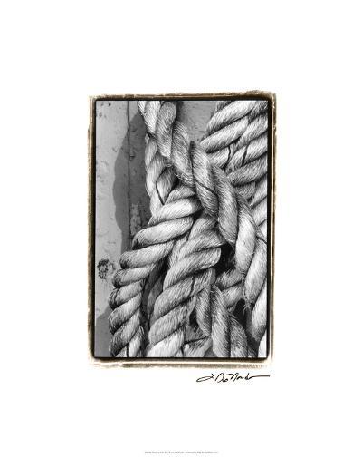 Tied Up I-Laura Denardo-Premium Giclee Print