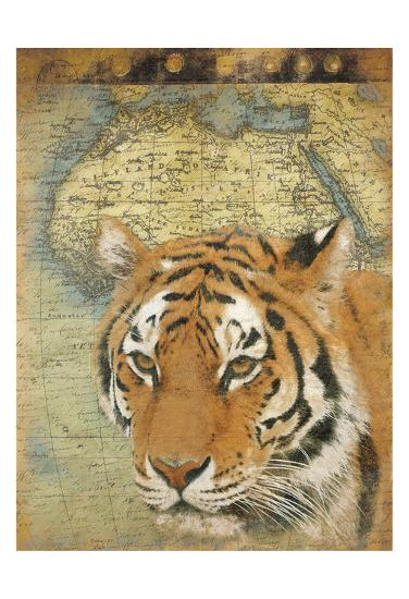 Tiger Africa-Jace Grey-Art Print