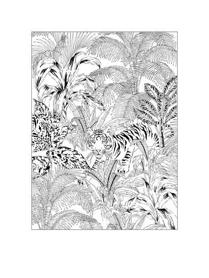 Tiger Black and White-Jacqueline Colley-Giclee Print