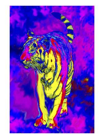 Tiger Endangered Species-Rich LaPenna-Giclee Print
