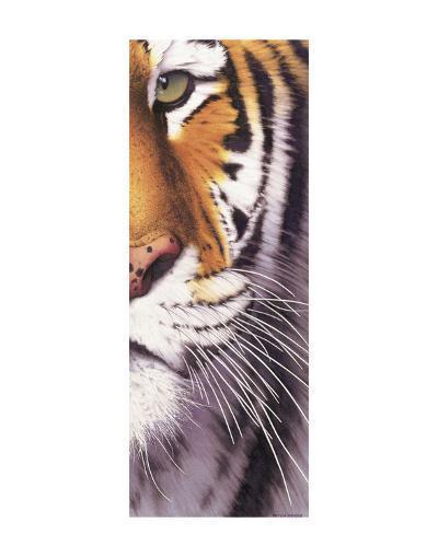 Tiger Eye-Mitch Ridder-Art Print