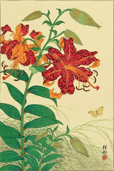 Tiger Lilies and Butterfly-Koson Ohara-Giclee Print