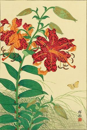 https://imgc.artprintimages.com/img/print/tiger-lilies-and-butterfly_u-l-pnaccu0.jpg?p=0