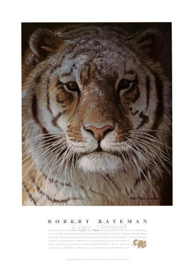 Tiger Portrait-Robert Bateman-Art Print