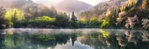 Morning Calm by Tiger Seo