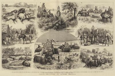 Tiger-Shooting in Lower Bengal-Godefroy Durand-Giclee Print