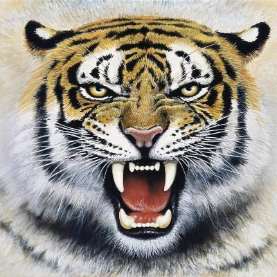 Tiger-Harro Maass-Giclee Print