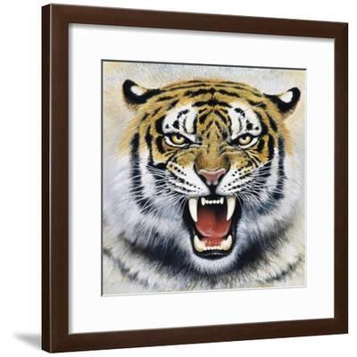 Tiger-Harro Maass-Framed Giclee Print