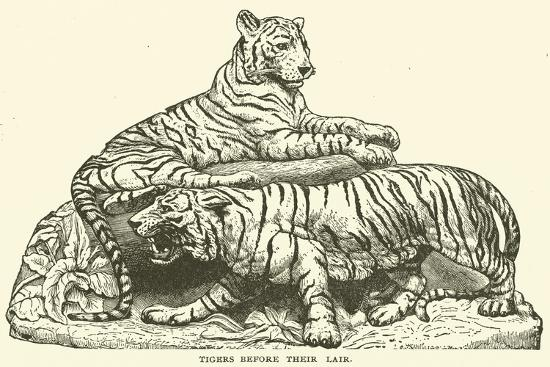 Tigers before their Lair--Giclee Print