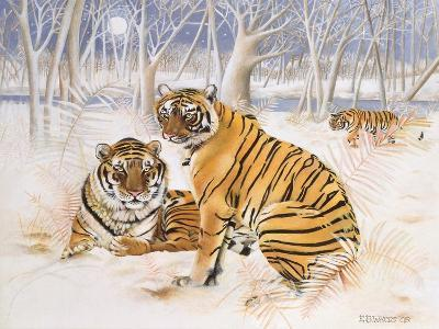 Tigers in the Snow, 2005-E.B. Watts-Giclee Print