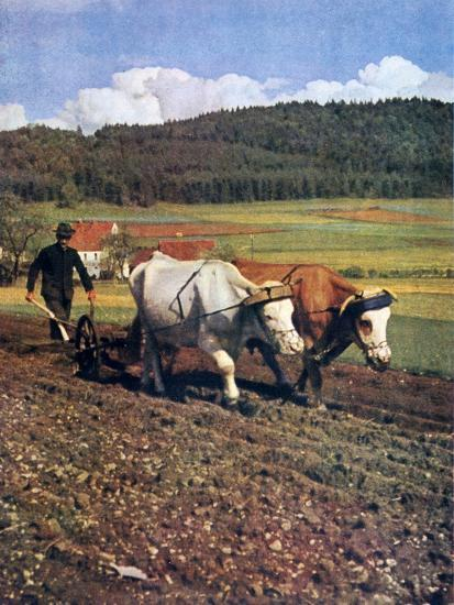 Tilling, Germany, 1943--Giclee Print