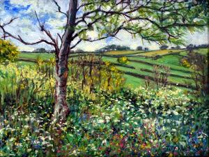 Across The Fields by Tilly Willis