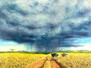 African Storm, 2016 by Tilly Willis