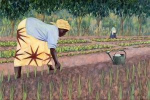 Planting Onions, 2005 by Tilly Willis