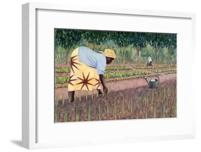 Planting Onions, 2005