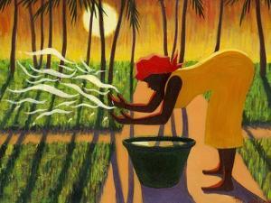The Spirit Garden, 2007 by Tilly Willis