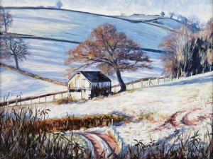 Winter Frost, 2009 by Tilly Willis