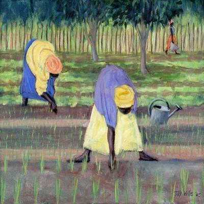Women Gardening, 2005 by Tilly Willis