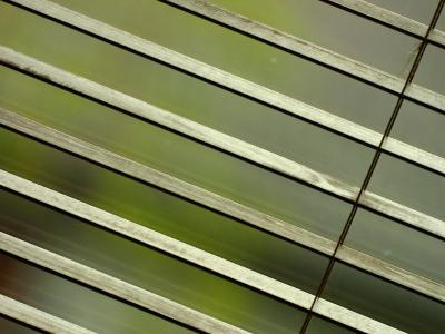 Tilted and Cropped View of Venetian Blind--Photographic Print