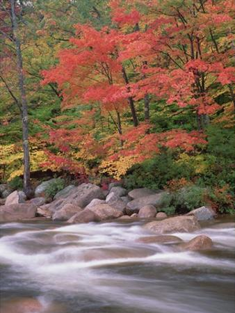 Autumn along Swift River, White Mountains National Forest, New Hampshire