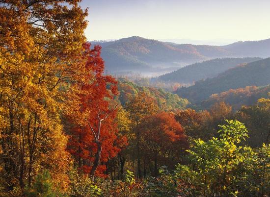 tim-fitzharris-autumn-foliage-on-blue-ridge-range-near-jumping-off-rock-north-carolina