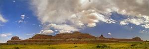 Big Wild Horse Mesa near Goblin Valley, Utah by Tim Fitzharris