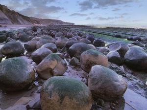 Bowling Ball Beach, California, Usa by Tim Fitzharris